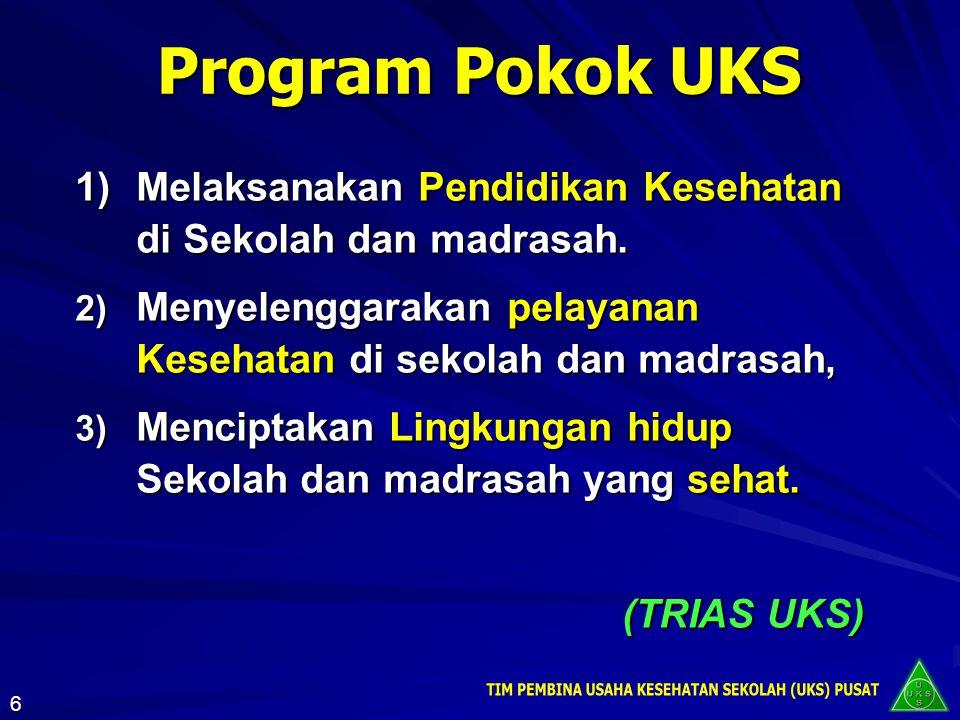 Program Pokok UKS 1)Melaksanakan Pendidikan Kesehatan di Sekolah dan madrasah. 2) Menyelenggarakan pelayanan Kesehatan di sekolah dan madrasah, 3) Men