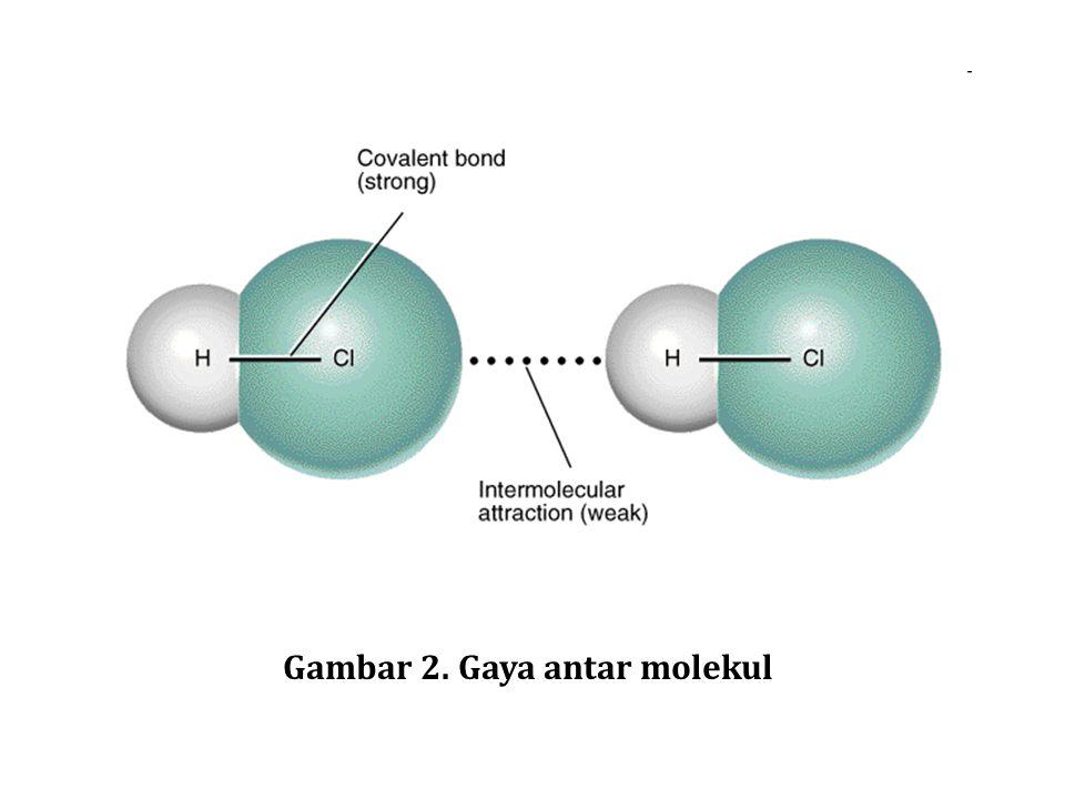 Gaya ini bekerja di antara molekul - molekul stabil atau antar gugus-gugus fungsional dari makromolekul.molekul makromolekul Gaya antar molekul ini menyebabkan molekul- molekul berkumpul .