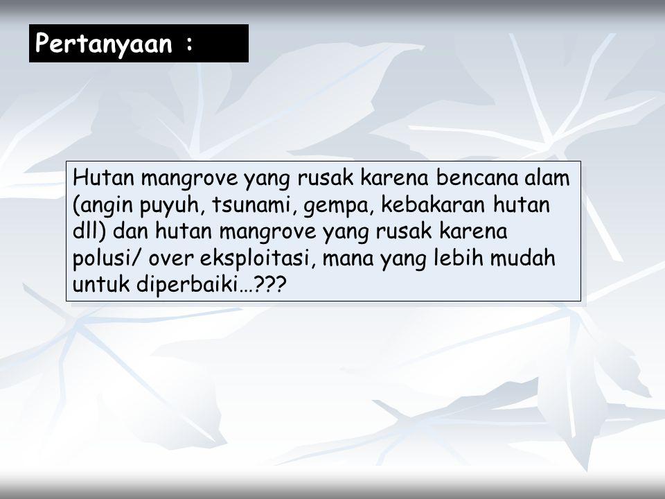 Pertanyaan : Hutan mangrove yang rusak karena bencana alam (angin puyuh, tsunami, gempa, kebakaran hutan dll) dan hutan mangrove yang rusak karena pol