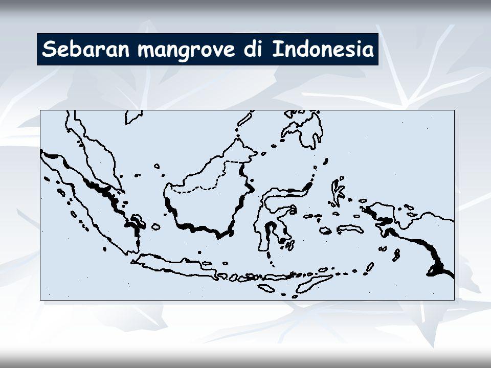 Sebaran mangrove di Indonesia