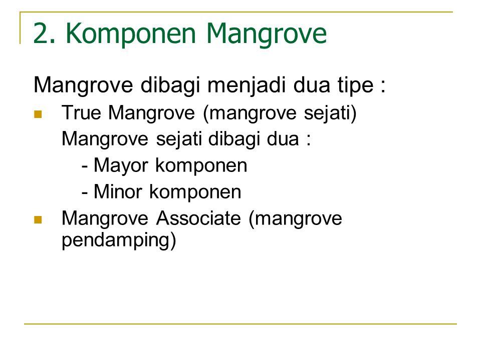 2. Komponen Mangrove Mangrove dibagi menjadi dua tipe : True Mangrove (mangrove sejati) Mangrove sejati dibagi dua : - Mayor komponen - Minor komponen