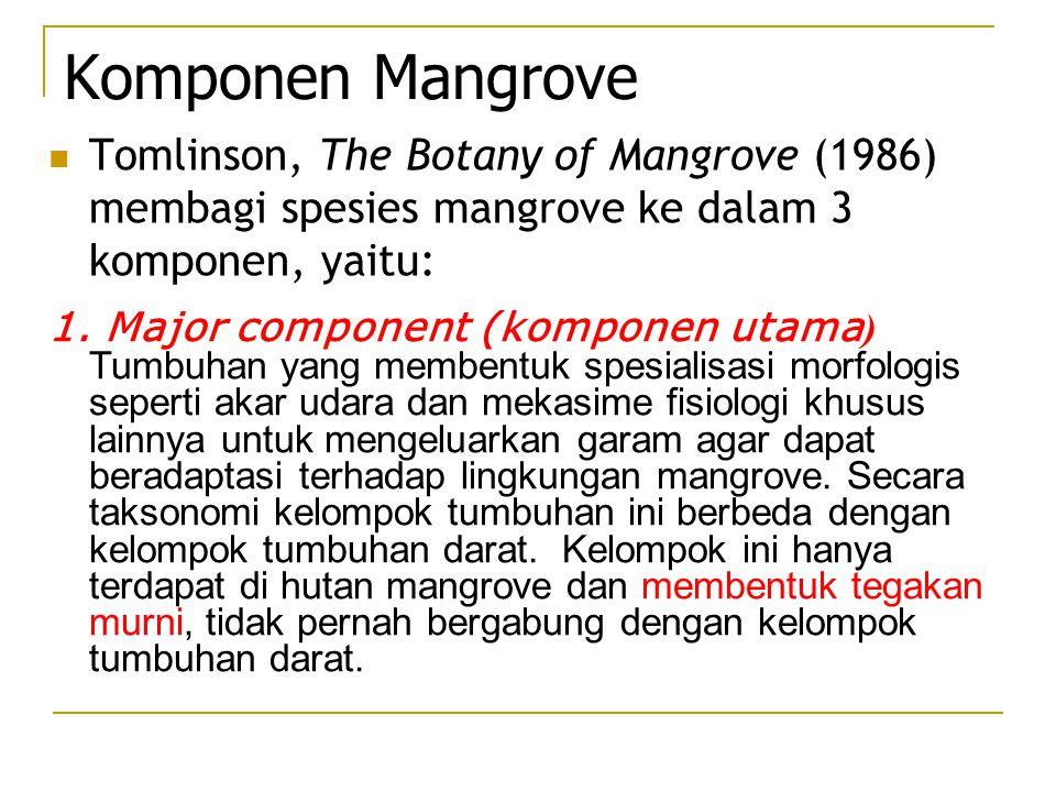 Komponen Mangrove Tomlinson, The Botany of Mangrove (1986) membagi spesies mangrove ke dalam 3 komponen, yaitu: 1. Major component (komponen utama ) T