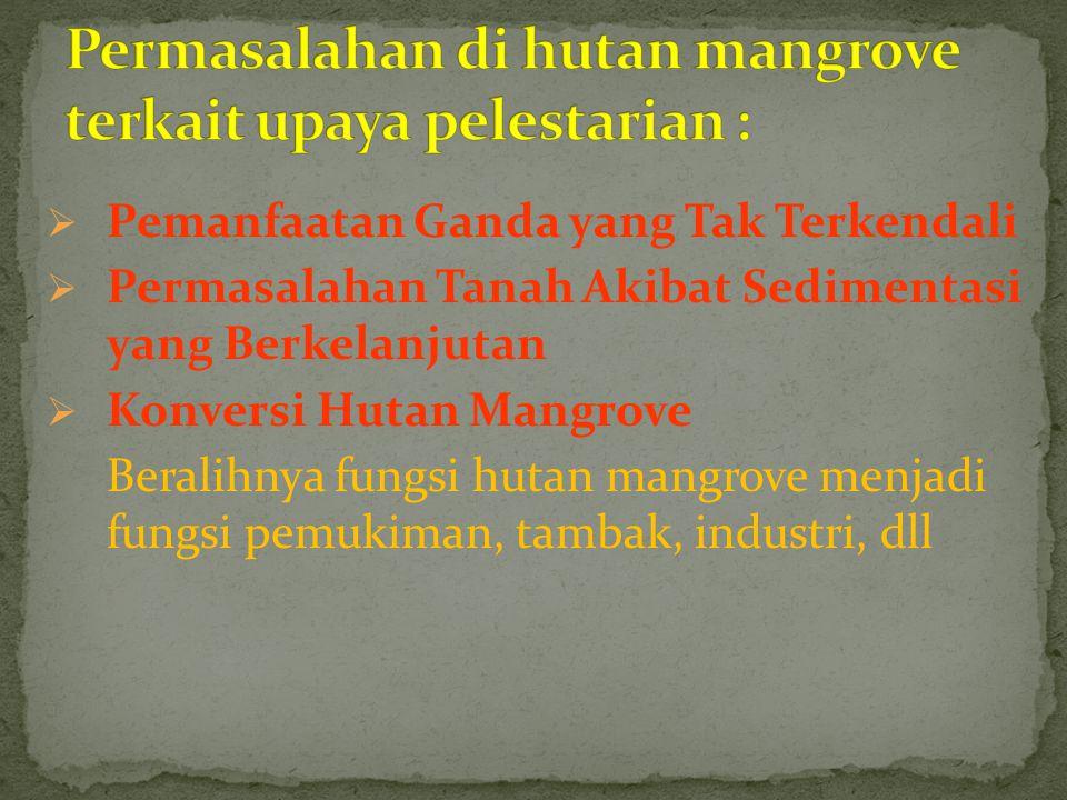  Pemanfaatan Ganda yang Tak Terkendali  Permasalahan Tanah Akibat Sedimentasi yang Berkelanjutan  Konversi Hutan Mangrove Beralihnya fungsi hutan m