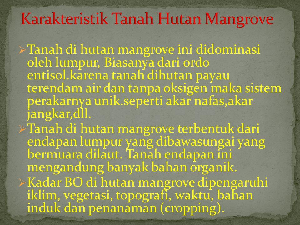  Tanah di hutan mangrove ini didominasi oleh lumpur, Biasanya dari ordo entisol.karena tanah dihutan payau terendam air dan tanpa oksigen maka sistem