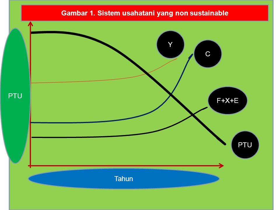 PTU F+X+E C Y PTU Tahun Gambar 1. Sistem usahatani yang non sustainable