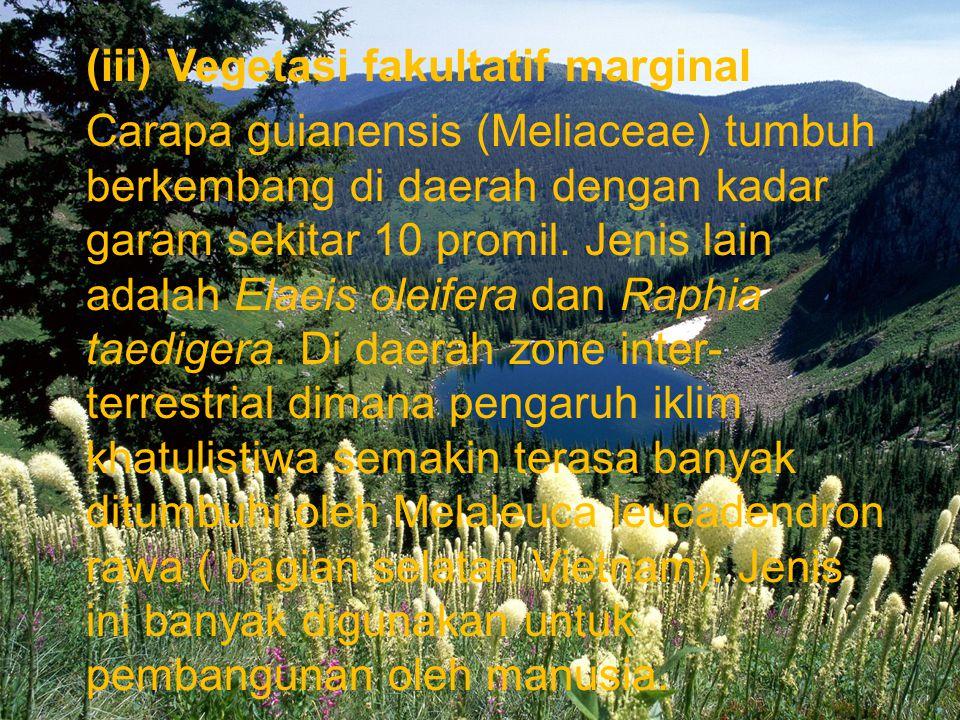 (iii) Vegetasi fakultatif marginal Carapa guianensis (Meliaceae) tumbuh berkembang di daerah dengan kadar garam sekitar 10 promil. Jenis lain adalah E