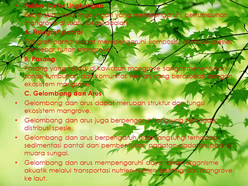 Faktor-faktor Lingkungan Beberapa faktor lingkungan yang mempengaruhi pertumbuhan mangrove di suatu lokasi adalah : A. Fisiografi pantai Fisiografi pa