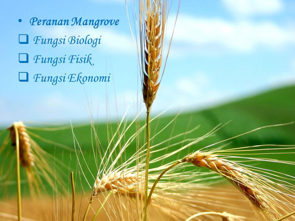 Peranan Mangrove  Fungsi Biologi  Fungsi Fisik  Fungsi Ekonomi