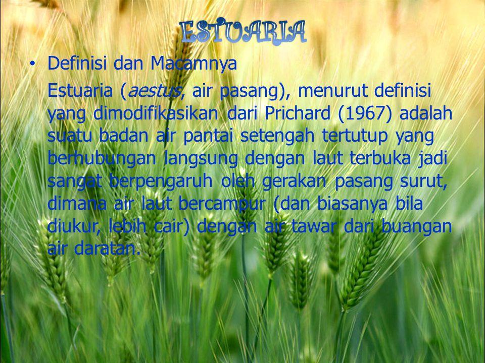 Definisi dan Macamnya Estuaria (aestus, air pasang), menurut definisi yang dimodifikasikan dari Prichard (1967) adalah suatu badan air pantai setengah