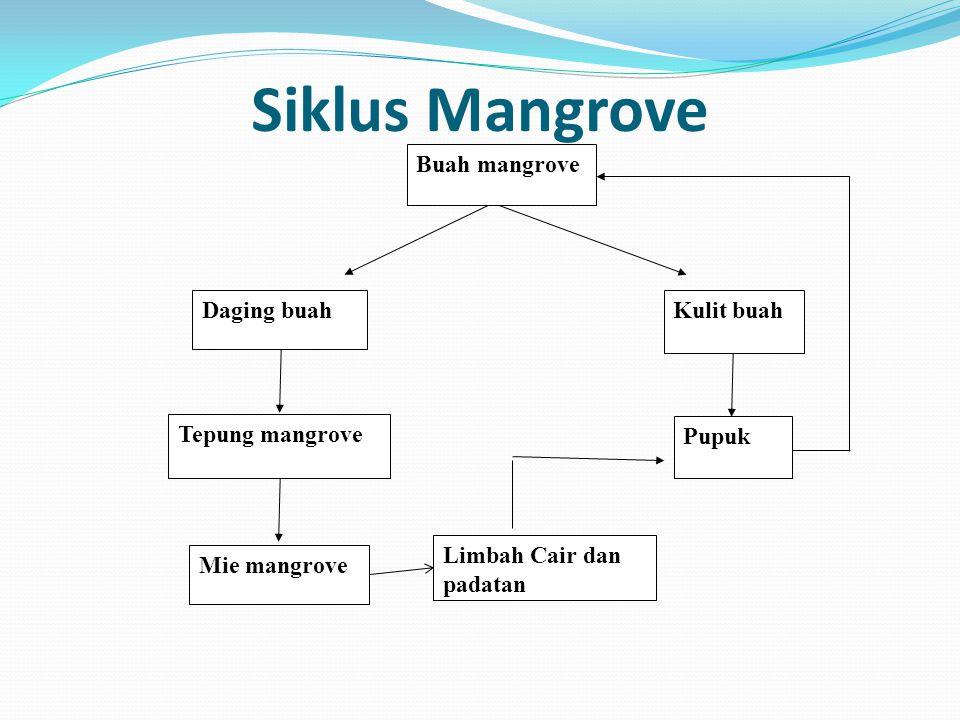 Siklus Mangrove Buah mangrove Kulit buah Tepung mangrove Daging buah Pupuk Mie mangrove Limbah Cair dan padatan