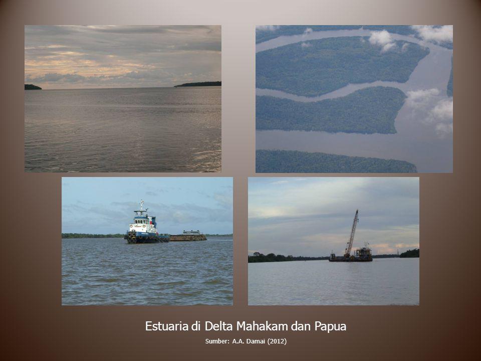 Estuaria di Delta Mahakam dan Papua Sumber: A.A. Damai (2012)