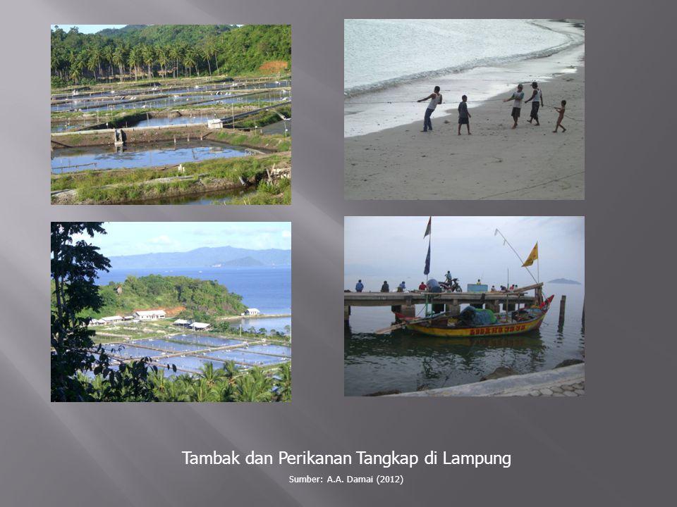 Tambak dan Perikanan Tangkap di Lampung Sumber: A.A. Damai (2012)