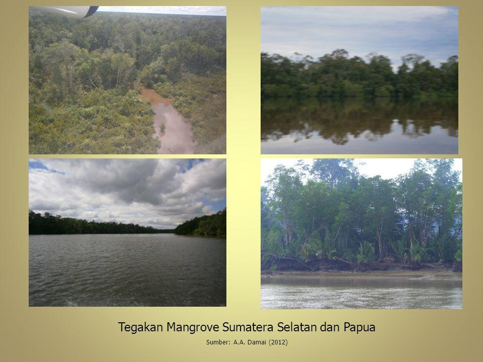 Tegakan Mangrove Sumatera Selatan dan Papua Sumber: A.A. Damai (2012)