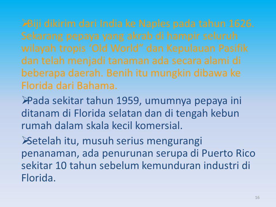 """ Biji dikirim dari India ke Naples pada tahun 1626. Sekarang pepaya yang akrab di hampir seluruh wilayah tropis 'Old World"""" dan Kepulauan Pasifik dan"""