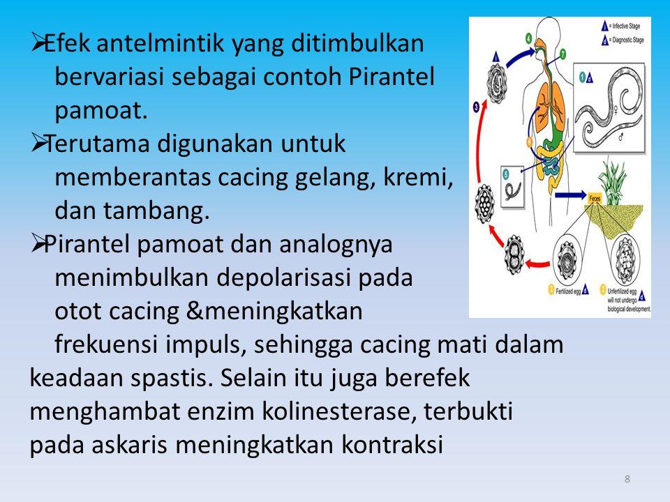  Efek antelmintik yang ditimbulkan bervariasi sebagai contoh Pirantel pamoat.  Terutama digunakan untuk memberantas cacing gelang, kremi, dan tamban