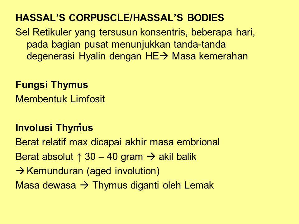 HASSAL'S CORPUSCLE/HASSAL'S BODIES Sel Retikuler yang tersusun konsentris, beberapa hari, pada bagian pusat menunjukkan tanda-tanda degenerasi Hyalin dengan HE  Masa kemerahan Fungsi Thymus Membentuk Limfosit Involusi Thymus Berat relatif max dicapai akhir masa embrional Berat absolut ↑ 30 – 40 gram  akil balik  Kemunduran (aged involution) Masa dewasa  Thymus diganti oleh Lemak