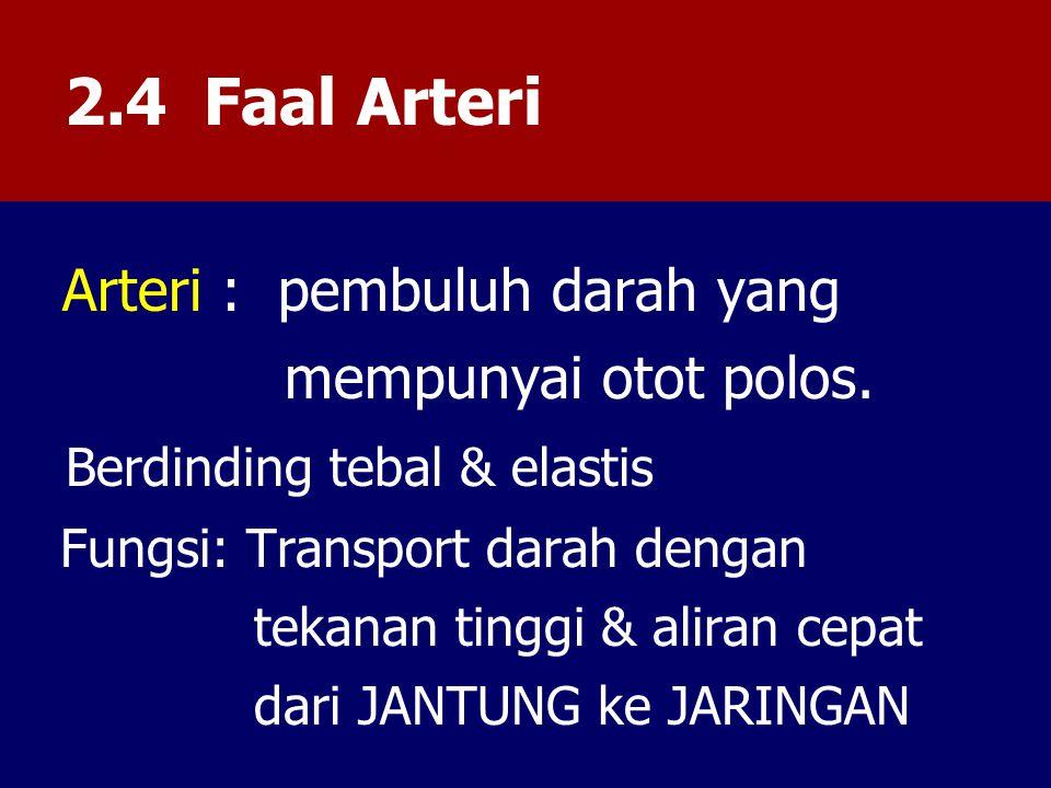 2.4 Faal Arteri Arteri : pembuluh darah yang mempunyai otot polos.