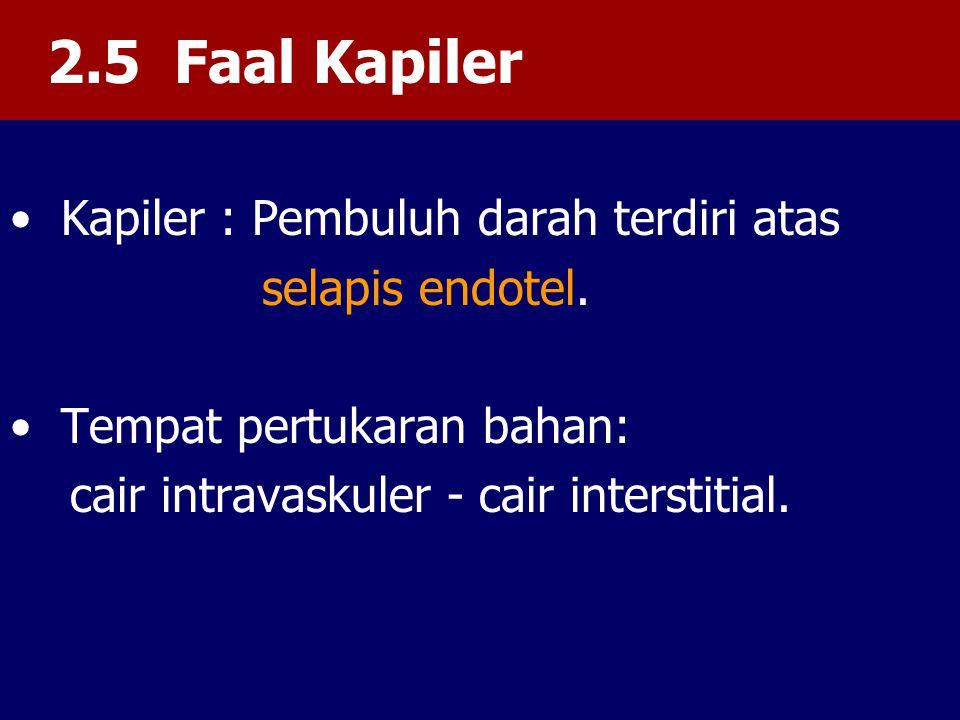 2.5 Faal Kapiler Kapiler : Pembuluh darah terdiri atas selapis endotel.