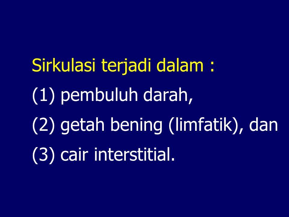 Sirkulasi terjadi dalam : (1) pembuluh darah, (2) getah bening (limfatik), dan (3) cair interstitial.
