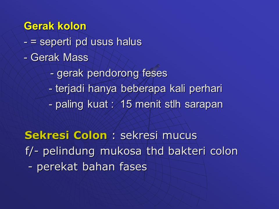 Gerak kolon - = seperti pd usus halus - Gerak Mass - gerak pendorong feses - gerak pendorong feses - terjadi hanya beberapa kali perhari - terjadi han