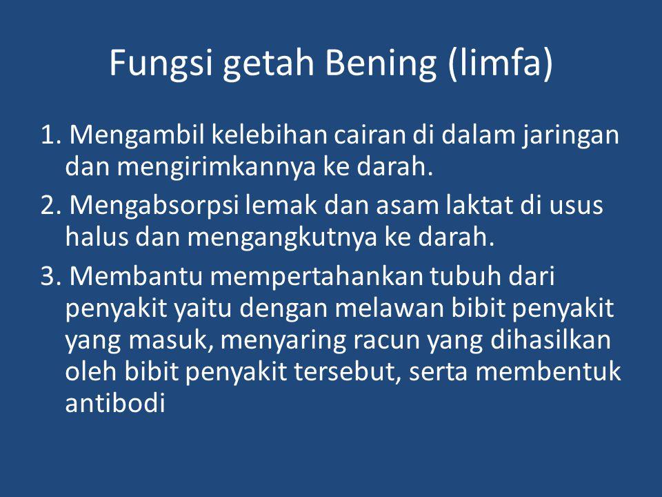 Fungsi getah Bening (limfa) 1. Mengambil kelebihan cairan di dalam jaringan dan mengirimkannya ke darah. 2. Mengabsorpsi lemak dan asam laktat di usus