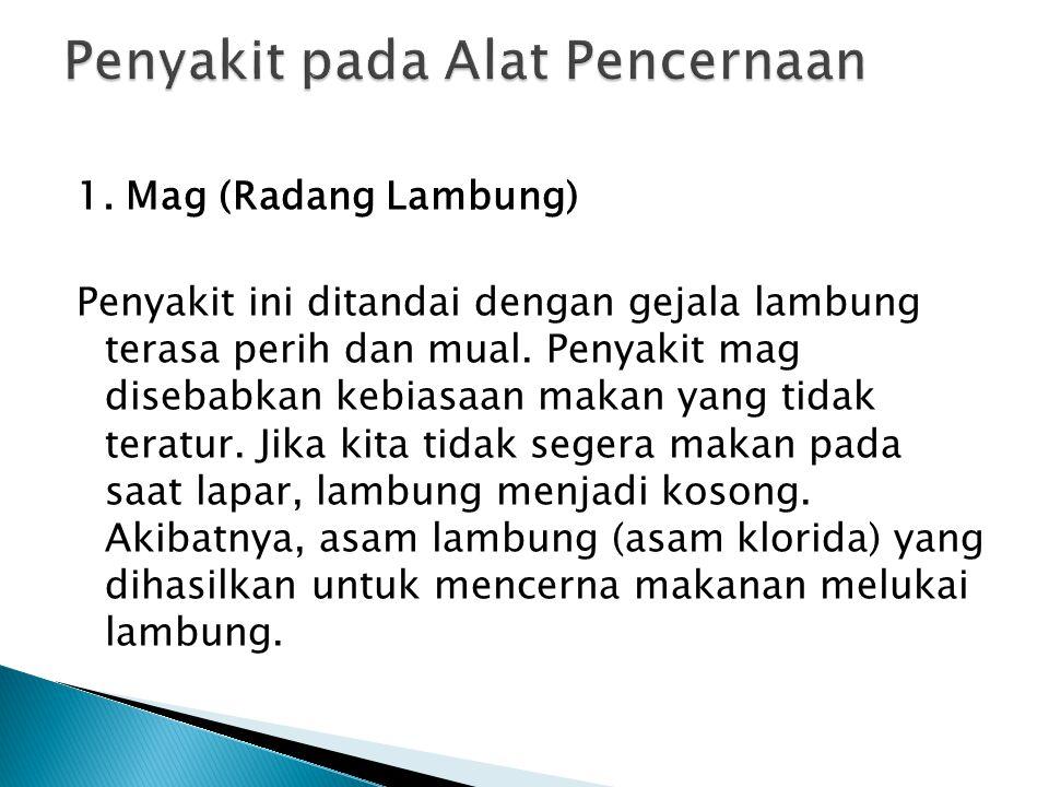 1.Mag (Radang Lambung) Penyakit ini ditandai dengan gejala lambung terasa perih dan mual.