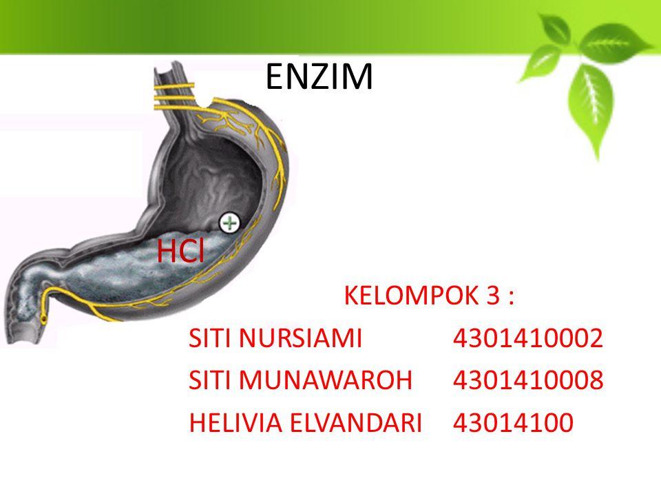 ENZIM KELOMPOK 3 : SITI NURSIAMI4301410002 SITI MUNAWAROH4301410008 HELIVIA ELVANDARI43014100 HCl