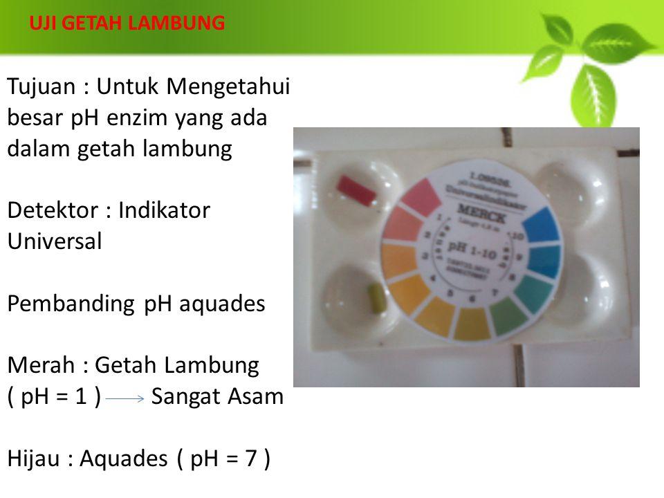 UJI GETAH LAMBUNG Tujuan : Untuk Mengetahui besar pH enzim yang ada dalam getah lambung Detektor : Indikator Universal Pembanding pH aquades Merah : G