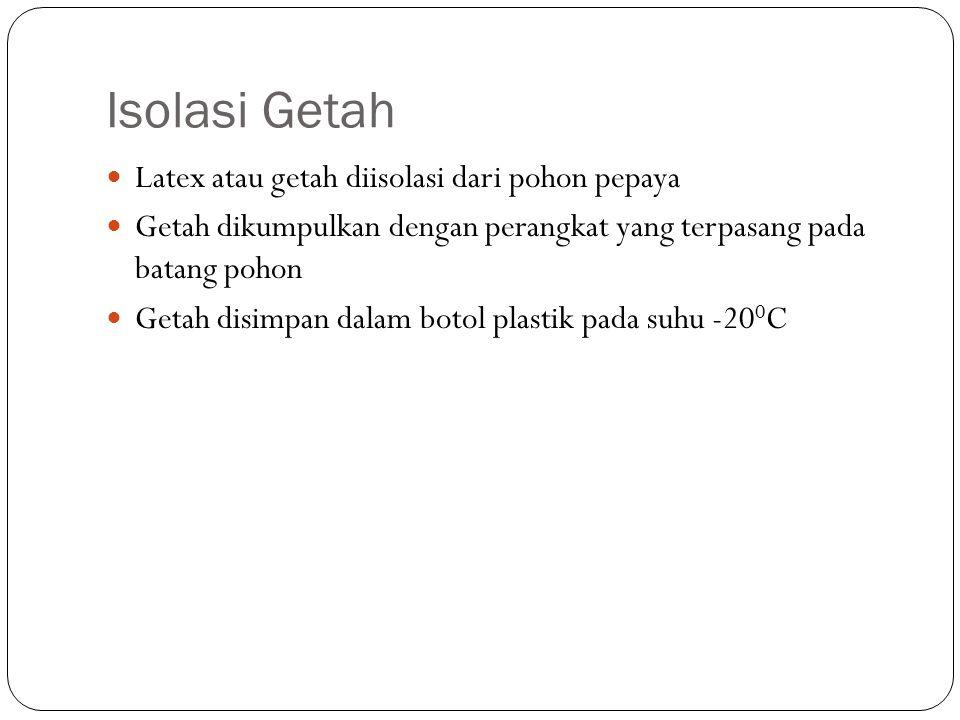 Purifikasi Papain Salt precipitation (pengendapan garam) 2 tahap Aqueous two-phase system (sistem dua fase)