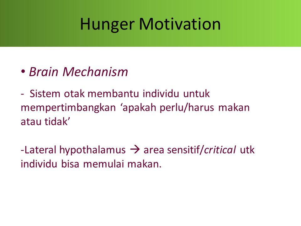Hunger Motivation Brain Mechanism - Sistem otak membantu individu untuk mempertimbangkan 'apakah perlu/harus makan atau tidak' -Lateral hypothalamus 