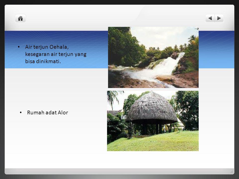 Air terjun Oehala, kesegaran air terjun yang bisa dinikmati. Rumah adat Alor