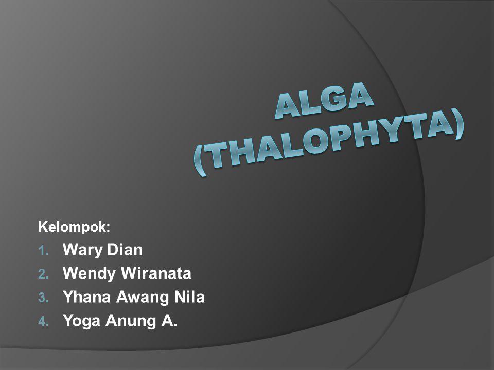  Pengertian Alga: Alga merupakan tumbuhan yang belum mempunyai akar, batang, dan daun yang sebenarnya, tetapi sudah memiliki klorofil sehingga bersifat autotrof.