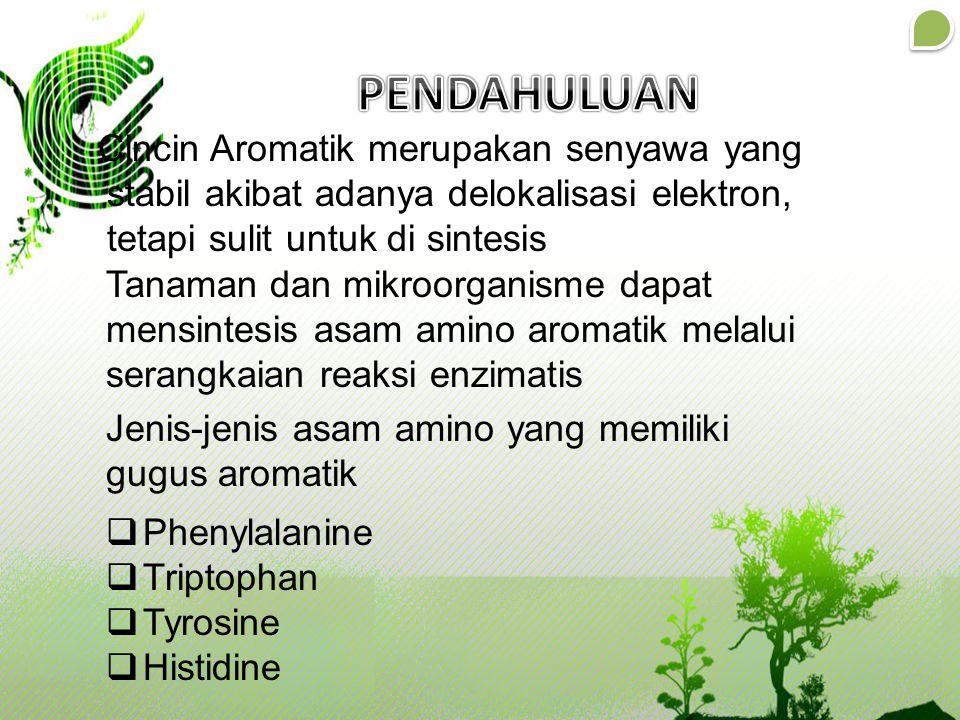 Cincin Aromatik merupakan senyawa yang stabil akibat adanya delokalisasi elektron, tetapi sulit untuk di sintesis Tanaman dan mikroorganisme dapat men