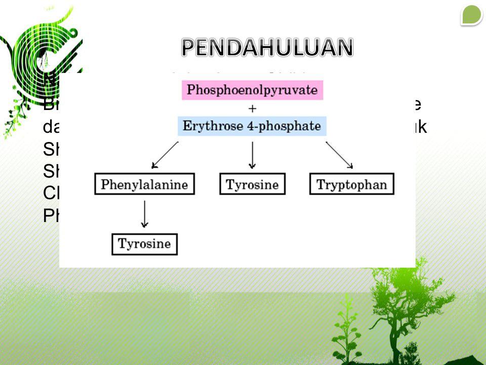Nama umum : Jalur Asam Shikimate Biosintesis dimulai dari Phosphoenolpyruvate dan Erythrose-4-phosphate untuk membentuk Shikimate Shikimate akan membe