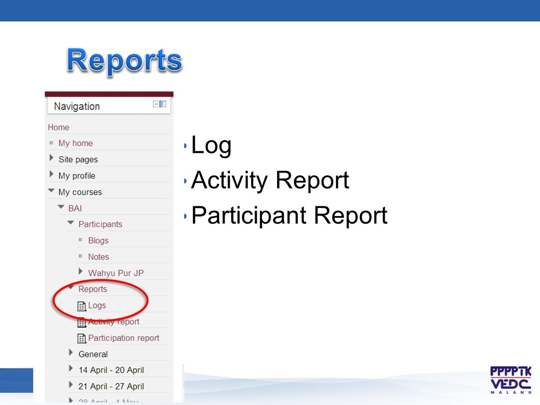 Log Activity Report Participant Report