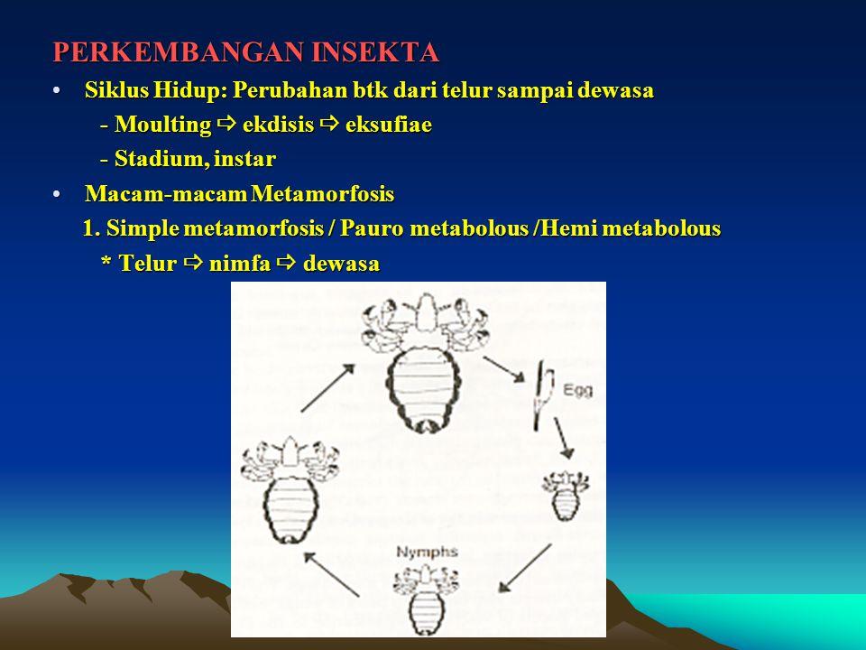 PERKEMBANGAN INSEKTA Siklus Hidup: Perubahan btk dari telur sampai dewasaSiklus Hidup: Perubahan btk dari telur sampai dewasa - Moulting  ekdisis  eksufiae - Moulting  ekdisis  eksufiae - Stadium, instar - Stadium, instar Macam-macam MetamorfosisMacam-macam Metamorfosis 1.