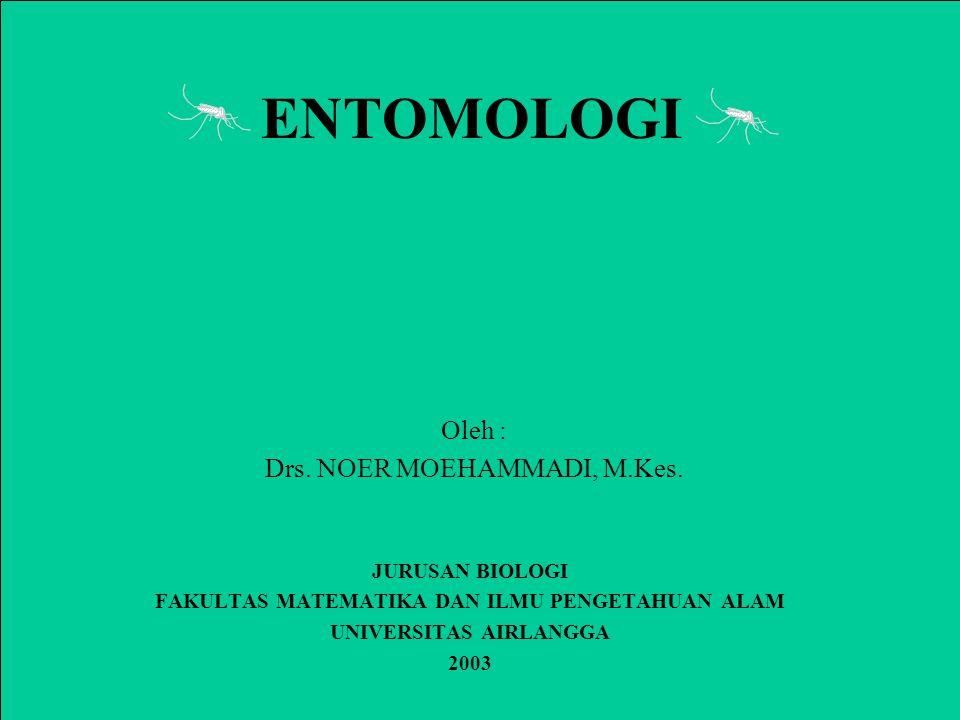 ENTOMOLOGI JURUSAN BIOLOGI FAKULTAS MATEMATIKA DAN ILMU PENGETAHUAN ALAM UNIVERSITAS AIRLANGGA 2003 Oleh : Drs.