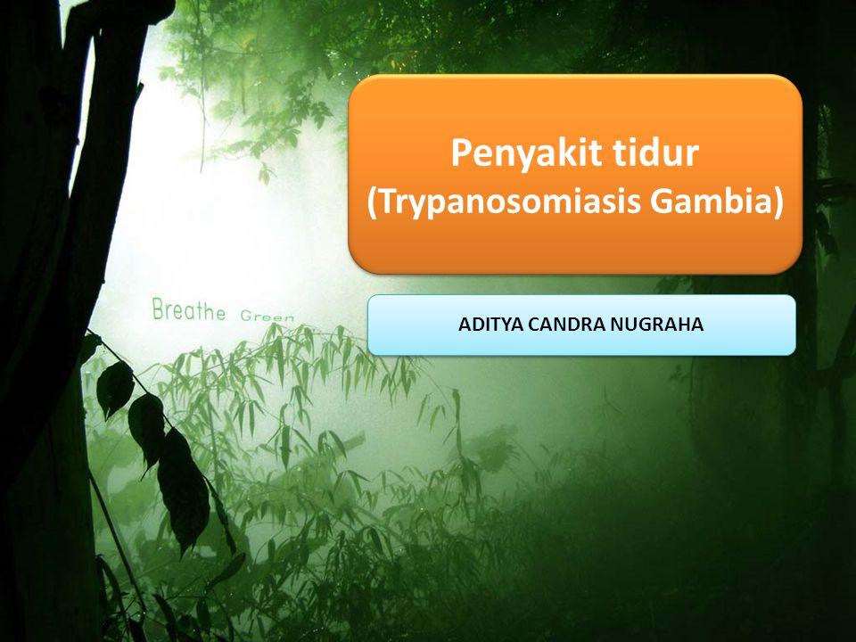 ADITYA CANDRA NUGRAHA Penyakit tidur (Trypanosomiasis Gambia)