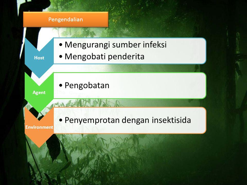 Pengendalian Host Mengurangi sumber infeksi Mengobati penderita Agent Pengobatan Environment Penyemprotan dengan insektisida
