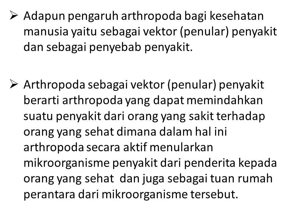 Adapun pengaruh arthropoda bagi kesehatan manusia yaitu sebagai vektor (penular) penyakit dan sebagai penyebab penyakit.  Arthropoda sebagai vektor