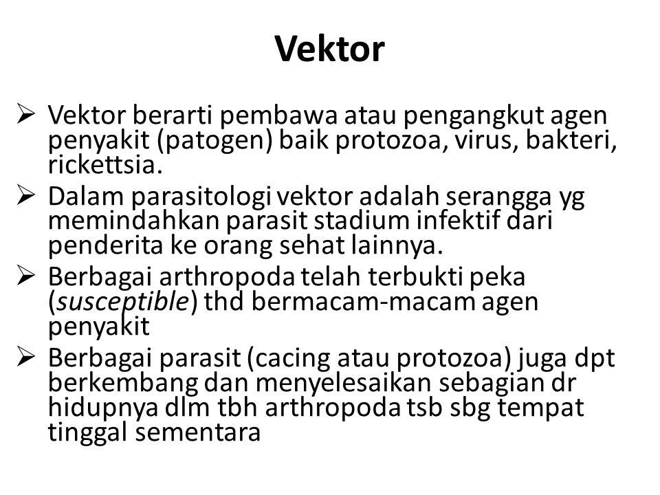 Vektor  Vektor berarti pembawa atau pengangkut agen penyakit (patogen) baik protozoa, virus, bakteri, rickettsia.  Dalam parasitologi vektor adalah
