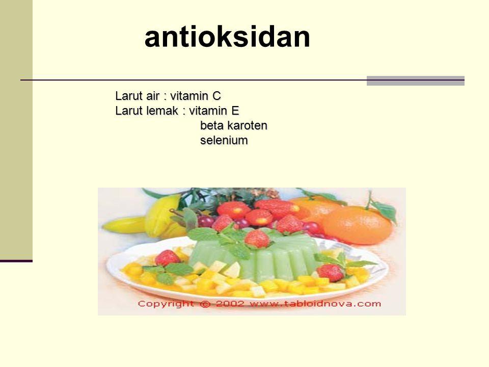 antioksidan Larut air : vitamin C Larut lemak : vitamin E beta karoten beta karoten selenium selenium
