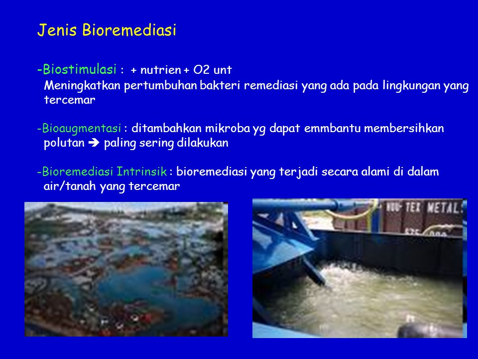 Bioenergi Gasohol/bioetanol (substitusi bensin/ premium)  kadar alkohol > 99,5 % Biogas (metana)  penerangan, bahan bakar (masak) dll Digester biogas RT Fermenter Bioetanol Ramah lingkungan, mengurangi efek rumah kaca, menggunakan bahan baku terbarukan