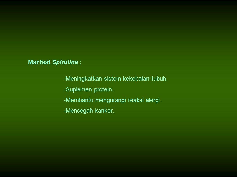 Manfaat Spirulina : -Meningkatkan sistem kekebalan tubuh. -Suplemen protein. -Membantu mengurangi reaksi alergi. -Mencegah kanker.