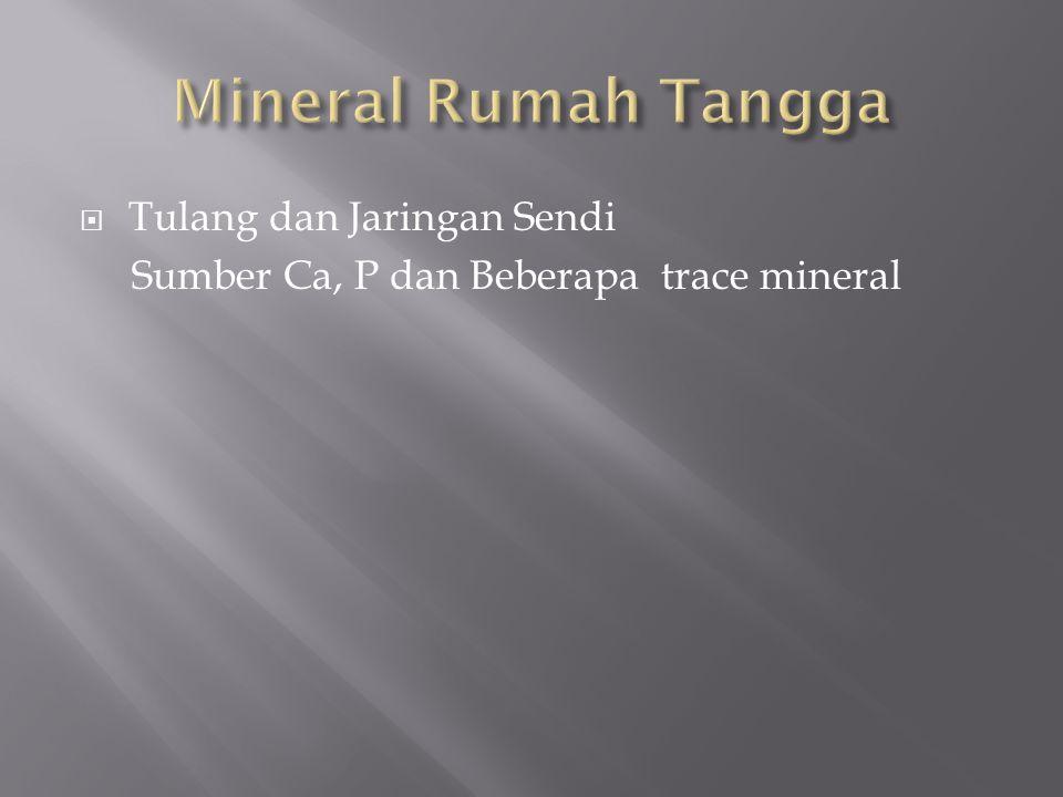  Tulang dan Jaringan Sendi Sumber Ca, P dan Beberapa trace mineral
