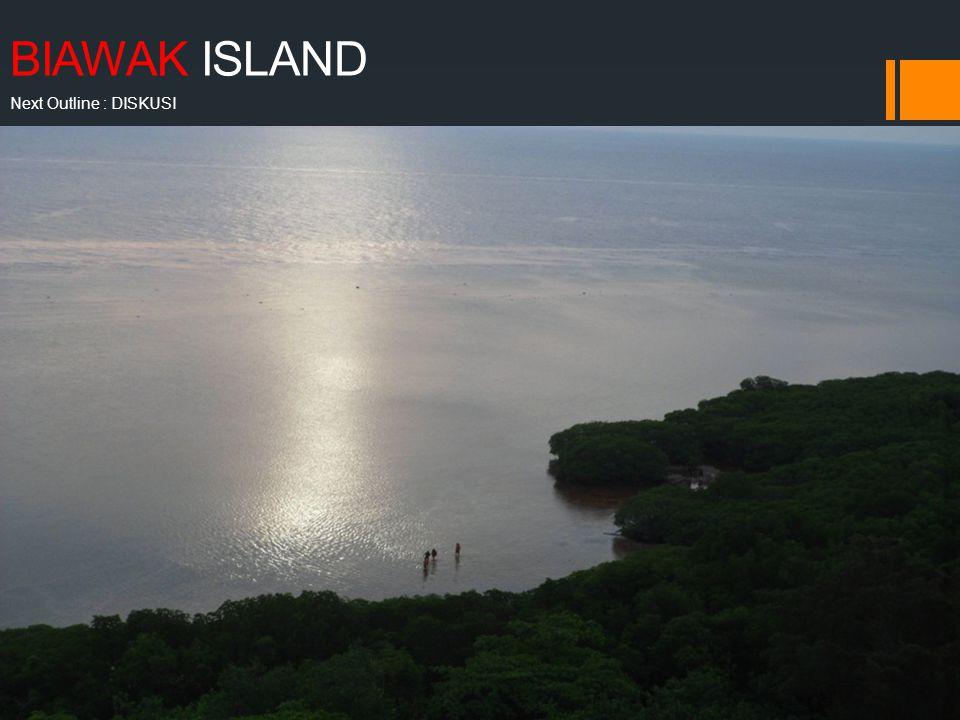 BIAWAK ISLAND Next Outline : DISKUSI