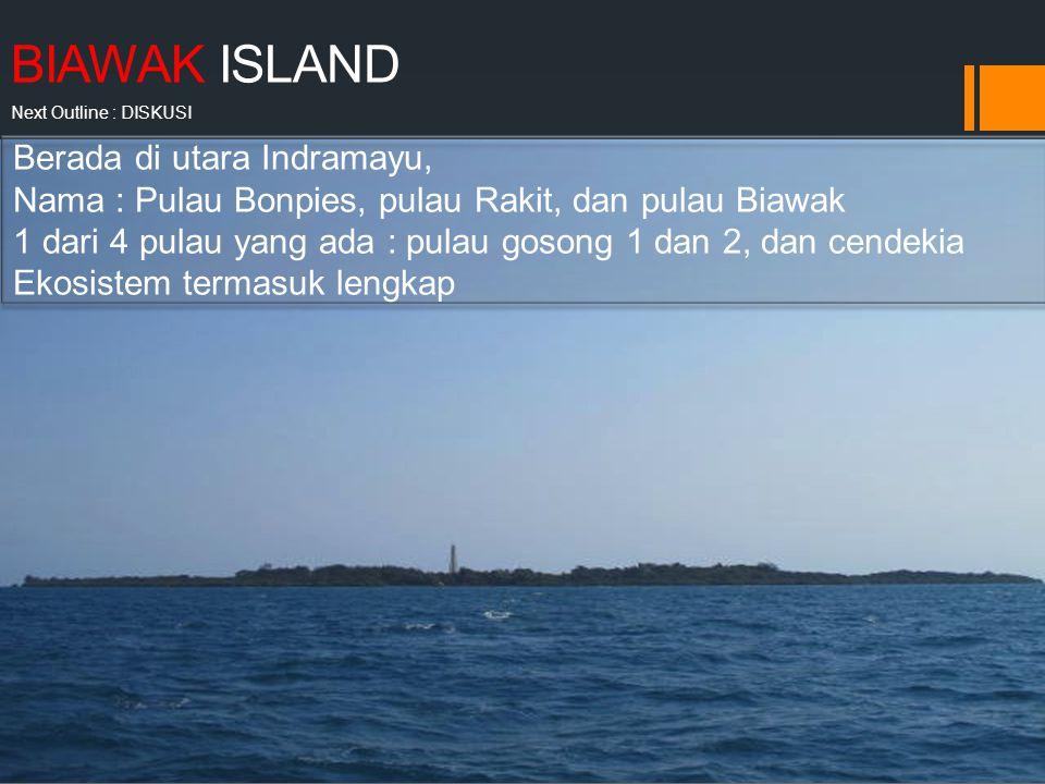 BIAWAK ISLAND Next Outline : DISKUSI BIAWAK ISLAND EXPLORATION AND RESEARCH