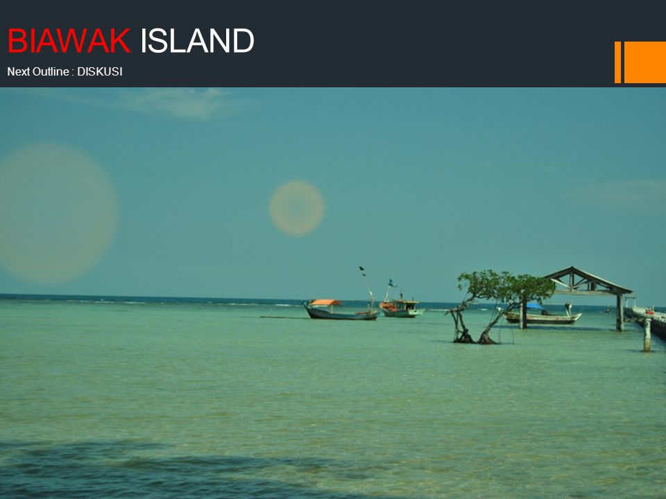 BIAWAK ISLAND Next Outline : DISKUSI