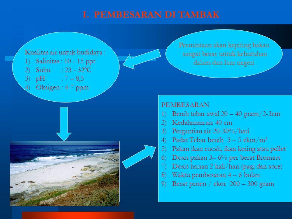 I. PEMBESARAN DI TAMBAK Permintaan akan kepiting bakau sangat besar untuk kebutuhan dalam dan luar negeri PEMBESARAN 1)Benih tebar awal 20 – 40 gram/2