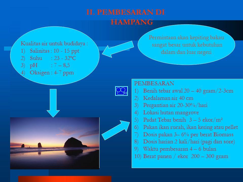 II. PEMBESARAN DI HAMPANG Permintaan akan kepiting bakau sangat besar untuk kebutuhan dalam dan luar negeri PEMBESARAN 1)Benih tebar awal 20 – 40 gram